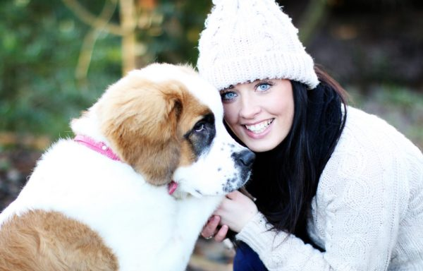 photo sessions with your pet northern ireland